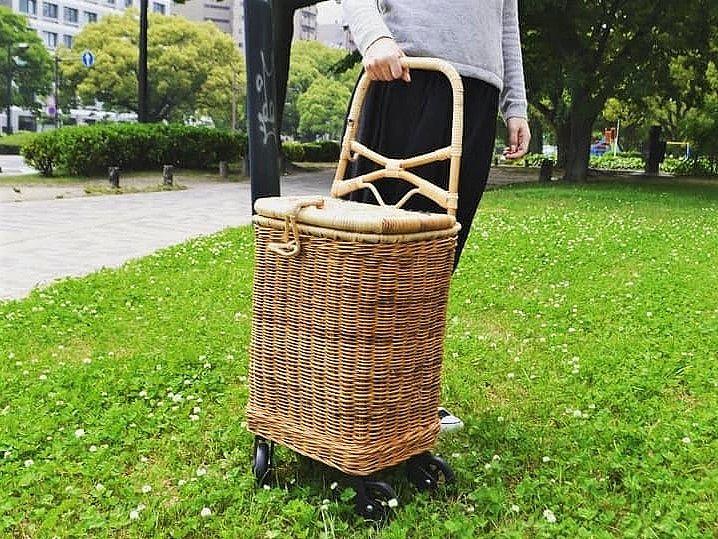 SY-055_wide_shoppingcart